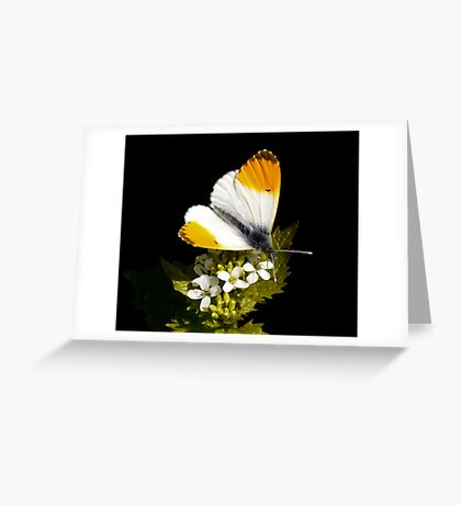 I'm in love with a wonderful guy. Greeting Card