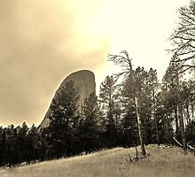 Devils Tower by Erika Price