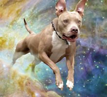 Sometimes dogs travel through space Sticker