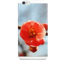 Center of It All iPhone Case/Skin