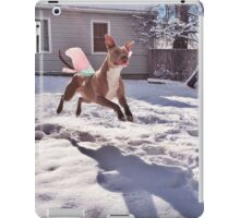 Murphyfly arcticensis in flight iPad Case/Skin