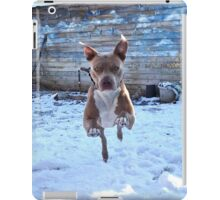 A Perfect Leap iPad Case/Skin