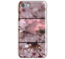 Arty blossoms in triptych iPhone Case/Skin