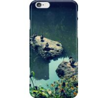 Duck on the pond iPhone Case/Skin