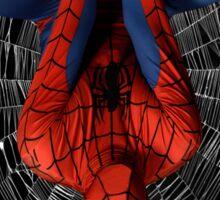 The Amazing Spider Man Cosplay Sticker