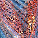 Netting Ark by Joan Wild