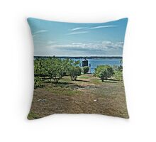 The Path From the Woods to The Castle Hill Light Throw Pillow