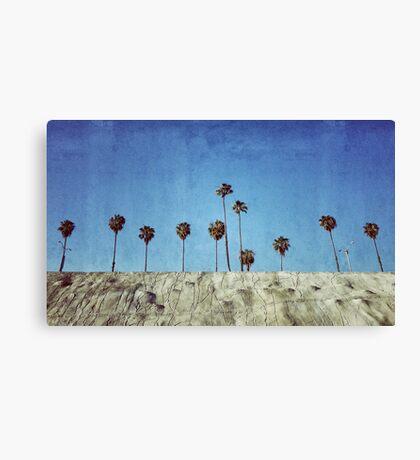 Bluff Palms Canvas Print