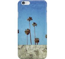 Bluff Palms iPhone Case/Skin