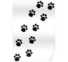Cat Paw Track Poster
