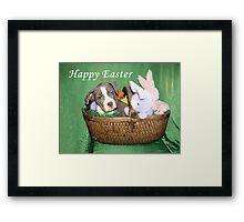 Am I An Easter Bunny ? Framed Print