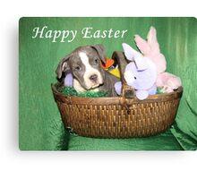 Am I An Easter Bunny ? Canvas Print