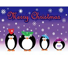 Christmas Penguins Photographic Print