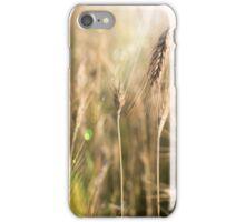 Summer Field iPhone Case/Skin