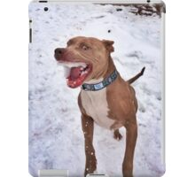 Murphy the Snow Eater iPad Case/Skin