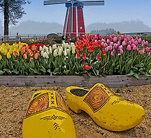 The Wooden Shoe by thomr