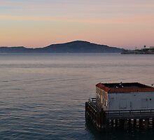 San Francisco Bay and Alcatraz Island by A Howard