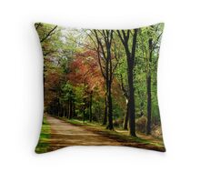 Springtime variations in colour Throw Pillow