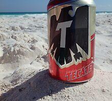 Sun, Sand, Sea, Cerveza by Allen Lucas
