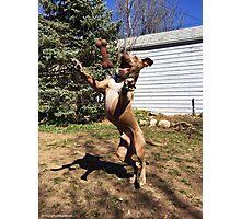 No Gravity! Photographic Print