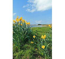 Spring at Threpmuir in the Pentlands, Edinburgh Photographic Print