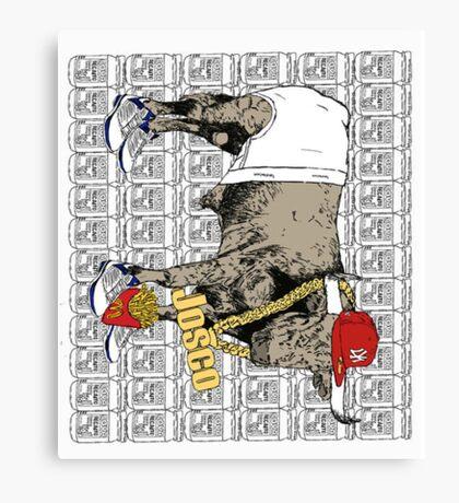 Latino Bull with Jordans Canvas Print