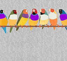 Lady Gouldian Finches by Janet Carlson