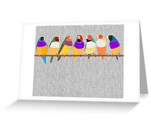 Lady Gouldian Finches Greeting Card