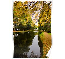 Salmon ponds tasmania , Yellow trees  Poster