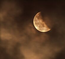 Blood moon 2014 last stage by Eti Reid
