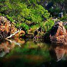 Billabong... by Tracie Louise