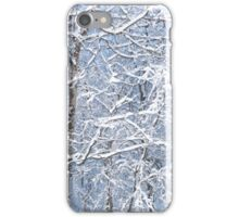 Winter Wonderland iPhone Case/Skin