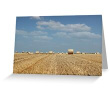 agriculture field with straw bale Greeting Card