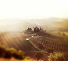 Dream of Tuscany  by VaidaAbdul
