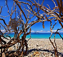 Inside Medusa's head - Ithaca island by Hercules Milas