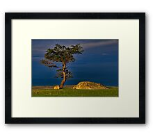 """""""The Tree, The Tempest and The Rocks"""" Framed Print"""