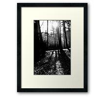 Freshfields Forrest Framed Print