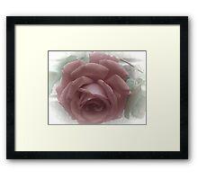 Faded Red Rose Framed Print