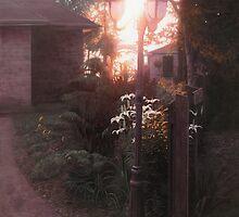 Lampost Garden by tennantart