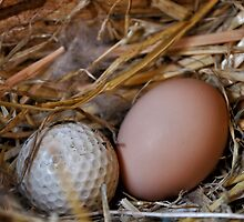 Is this where golfers come from? by Heather Haderly