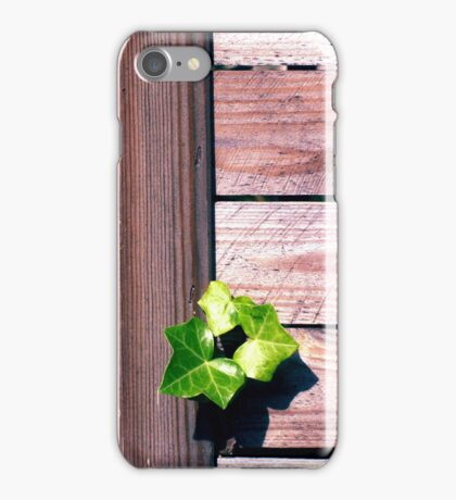 Fence of Wood iPhone Case/Skin
