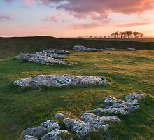 Arbor Low by James Grant