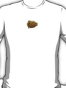 Albert the Turtle T-Shirt
