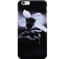 Sun Seeker iPhone Case/Skin