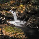 Irish Stream by Rustyoldtown