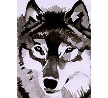 Wolf Ink. Photographic Print
