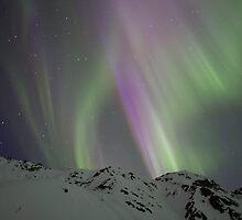 Night Lights #12 by akaurora