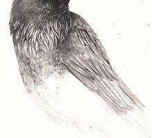 Raven Study by Hannah Falvey