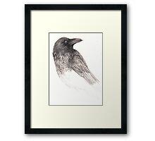 Raven Study Framed Print