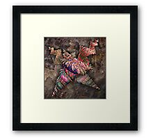 ©DA FA Espiral IA Framed Print